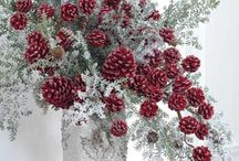 Christmas decor / by Enoch Peterson