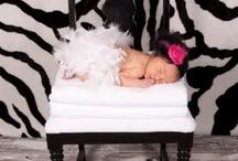 babies / by Caroline Howell