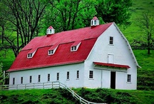 Barns, Farms & Country Living / by Beth Mills Foster