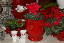 Holiday Decor / From Valentine's Day to Christmas, come see us for all your holiday needs. / by Moore & Moore Garden Center