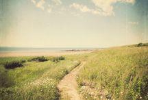 Choose Your Path / by Gypsy Thread ~ Carey