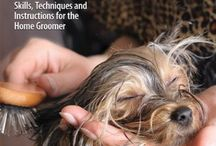 Dog Grooming / by Louise Dixon