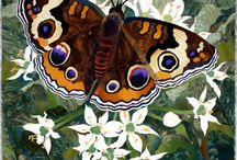 Animals-Insects-Butterflies, Moths, & Caterpillers / Butterflies, moths, and caterpillers. / by Ellary Branden