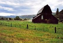 Barns / by Glenda Collins Emerson