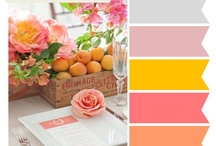color palettes / by Ashley Brown