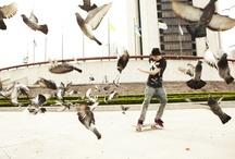 Skate / by Renato Botelho