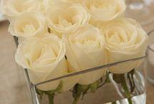 Sella's wedding ideas <3 / by Lauren Scheiderer