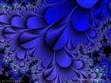 Got the blues.... / by Angela Leddy