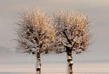 Winter Beautiful Winter / by Allison C-B