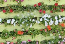 Jardins com Pallets / Reutilize pallets para jardins verticais ou vasos  / by MaisPaletes .com