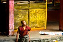 :: Monk ~ / by Eduardo Godoi