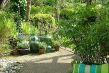 Garden & Outdoor / by Anyta Mulder