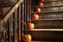 Fall / by Cathy Bizri