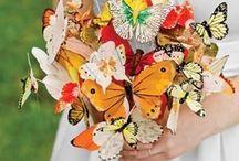 butterflies / by Jess Angove