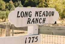 Long Meadow Ranch / Our 650-acre historic Mayacamas Estate is nestled high atop the Mayacamas Mountains above the Napa Valley. Here we produce award-winning red wines and handcrafted extra virgin olive oils - as well as grass-fed beef, eggs, and heirloom fruits and vegetables. / by Farmstead at Long Meadow Ranch