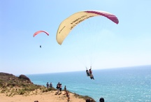 Paragliding / by Torrey Pines Gliderport