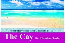 """The Cay (ch11-19) Vocabulary / This board contains vocabulary materials/activities for """"The Cay"""" chapters 11-19 / by Amy Hawkins"""