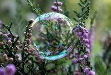 Bubbles & Water Drops / by Nancy Pate