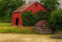 Barns / by Terry Crawford
