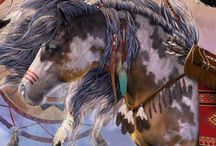 Native American / by Matthew Wilhauk