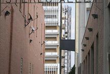 Memphis / by jes