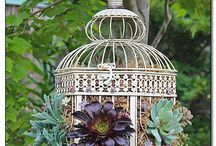 Garden Creations / Catchy ideas for garden decor. / by 1868 Crosby House Bed & Breakfast