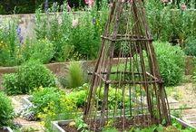 Tout le jardin. / by Anne Marie Christensen