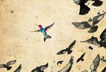 Wings  / by reJoyce