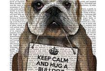 Keep calm & hug a Bulldog / by Maria Gabriella Borrelli