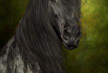 Horses~~~ / by Maria Harris-James