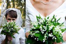 Weddings / by Colleen Kemp