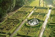 Gardens / by Glenn Forman