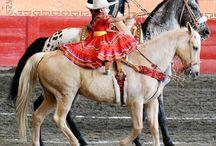 Mexican Heritage / by Maria Brambila