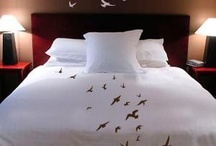 Beautiful Bedrooms / by Memory Foam Warehouse .