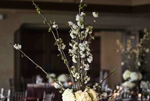 florals / by Lauren Mandle