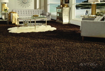 Bling / by Tuftex Carpets of California