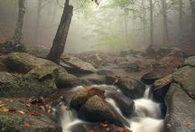 Foggy days / Photos I love of foggy days. I love to hike and be outdoors on misty foggy days! / by Amy Kathleen