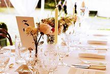 Weddings / by Hollie Reyes