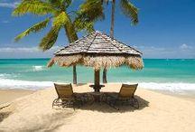 I need a vacation... / by Alexa Humphrey