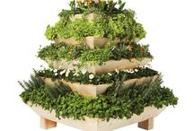 GARDEN - GREEN HOUSES - RAISED GARDEN BOXES - POTTING BENCHES - PLANTERS - HANGING BASKETS - LIVING WALLS & TOWERS / by ✿♍✿♥•♥ ☜- DMHL -☞ ♥•♥✿♍✿