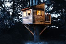 Tree Houses  / by Kandy Robertson