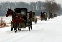 Amish / by Nancy P.