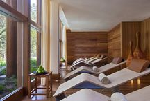 wellness / by ben wouters