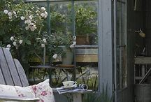 Garden room / by Tania Boureau