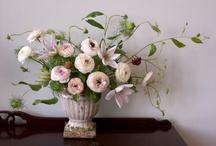 Wedding Ideas / by Mindy Weiss