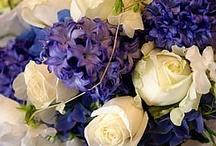 Wondorous Weddingness (someday) / by Sarah Herring