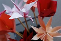 Origami / by Sheila Diggs