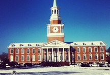 The Four Seasons at High Point University / High Point University NC | Best Colleges in the South / by High Point University