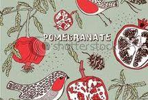 pomegranate / by Feruza Kaharova