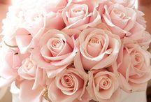 Bridal Boquets / Boquets for brides / by merve celik